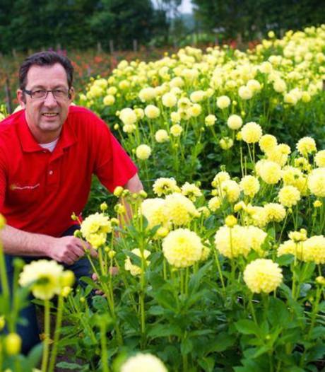 Rinie van Tilburg vervangt Jan Aarts als wethouder in gemeente Zundert