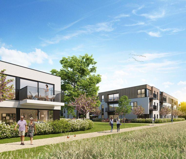 In de nieuwe wijk komen 62 assistentiewoningen en acht appartementen voor gezinnen. Er is ook aandacht voor veel groen.