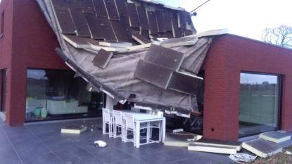 FOTOREEKS: Rukwinden veroorzaken stormschade in Zuid-West-Vlaanderen