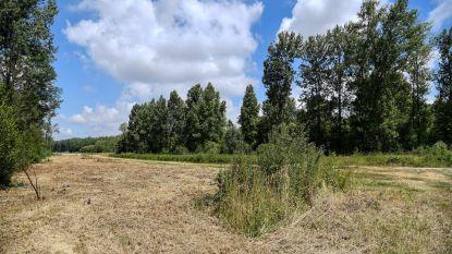 Op stap met projectingenieur door nieuw overstromingsgebied Vlassenbroek