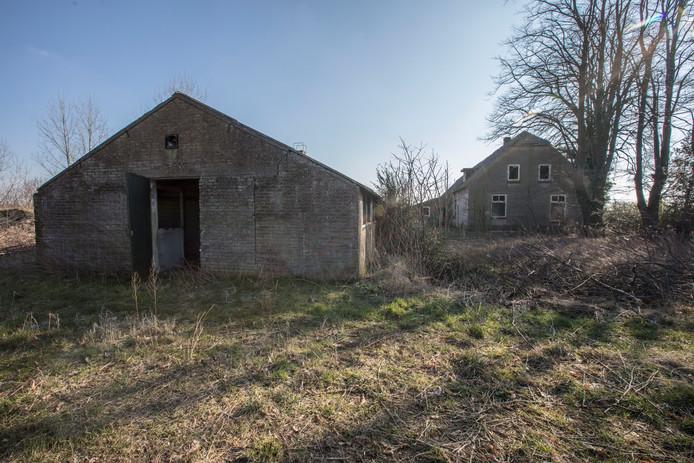 De boerderij en stallen aan de Jodenpeeldreef 9 in De Rips staan al jaren te verloederen. archieffoto