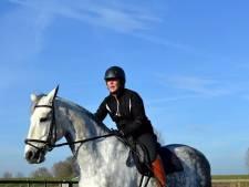 'Er kan zoveel meer met een pony of paard'