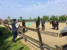 Paardenliefhebbers in Tiel in de stress om strenge regels voor rijbakken