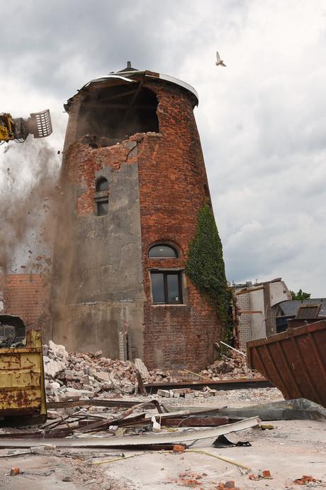 Commotie over uilen in gesloopte molen Reusel