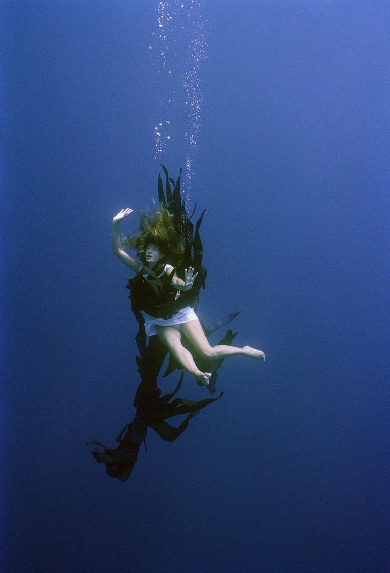 Call of the Sea. Beeld Maura Biava, 2003