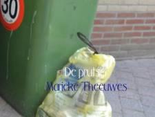 Marieke Theeuwes uit Eindhoven benut niet alle mogelijkheden in haar roman De Prutser