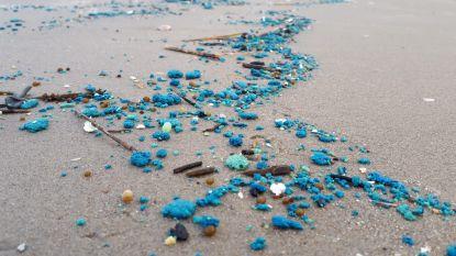 Opkuis van blauwe smurrie op stranden begonnen