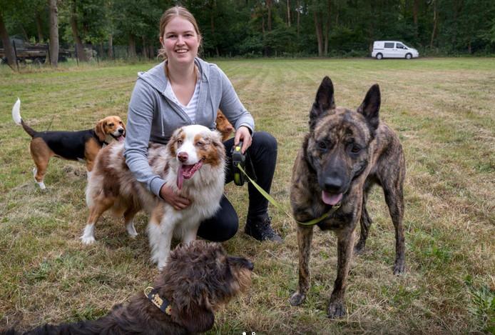 Mandy Scheffers van Mandy's Beestenboel is inmiddels verhuisd naar een veld aan de Honderdmorgensedijk in Vught.