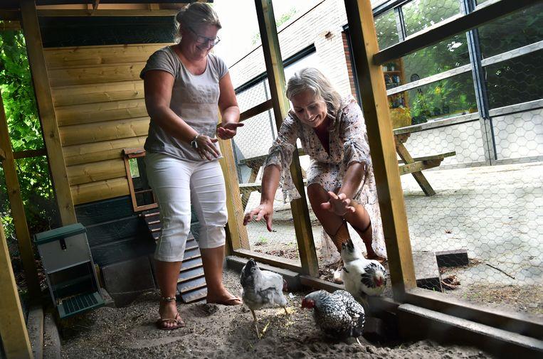 Directeur Suzanne de Koning (rechts) en docent Hilde Versluis van SBO De Werf in Amersfoort, waar kippen en konijnen bijdragen aan het verlagen van de werkdruk. Beeld Marcel van den Bergh
