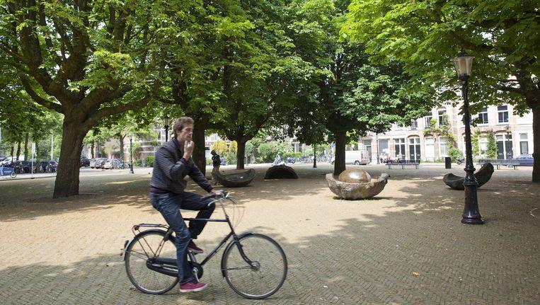 Het Kastanjeplein in Amsterdam-Oost Beeld Roy Del Vecchio