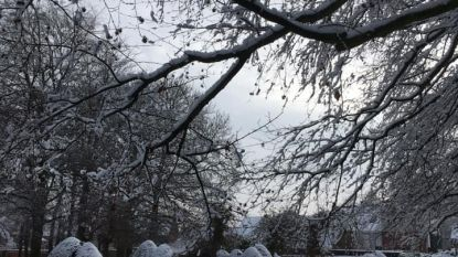 Sneeuw zorgt voor sereniteit op oude stedelijke begraafplaats