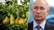 """Waarom Rusland Belgische en Oekraïense schepen in het vizier neemt: """"Spierballengerol om Trump te waarschuwen"""""""