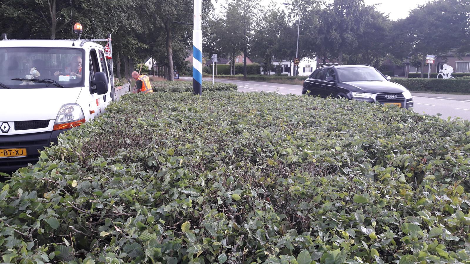 Vanachter deze inmiddels gesnoeide haag kwam de 62-jarige Moergestelse  toen zij zondagmiddag op de Akkerweg werd aangereden door een automobiliste, met fataal gevolg.