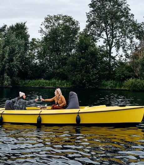Crowdfunding groot succes: tien bejaarde Valkjes uit Vinkeveen gered van de sloop