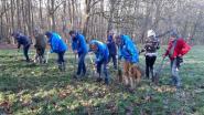884 bomen compenseren (een beetje) CO2-uitstoot van rally 6 uren van Kortrijk