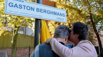 Half miljoen voor grondige opknapbeurt Gaston Berghmansdreef in Bouckenborghpark