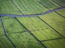 Gemeente ziet toekomst in een landschapsecoloog op het eiland