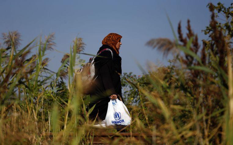 Een vrouw heeft vanuit Servië de grens met Hongarije overgestoken en loopt nu naar een tijdelijk opvangkamp. Beeld ap