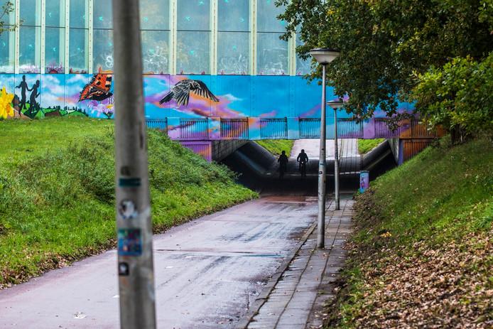 De tunnel die vanaf de Broekheurnerrondweg naar de Zuid Hollandlaan loopt, onder de N35. Als hier iets gebeurt kan niemand je horen, aldus een buurtbewoner.