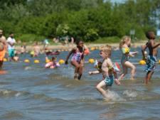 Negatief zwemadvies door blauwalg in Reeuwijkse Plassen