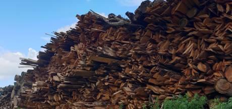 Biomassaplein wacht op coalitieonderhandelingen, weer vertraging