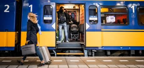 'Er staat een paard op het spoor': geen treinen tussen Eindhoven en Helmond