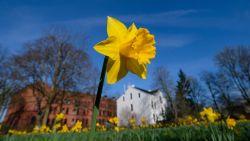 zonnige-en-warme-goede-vrijdag-tot-24%C2%B0c-in-paasweekend