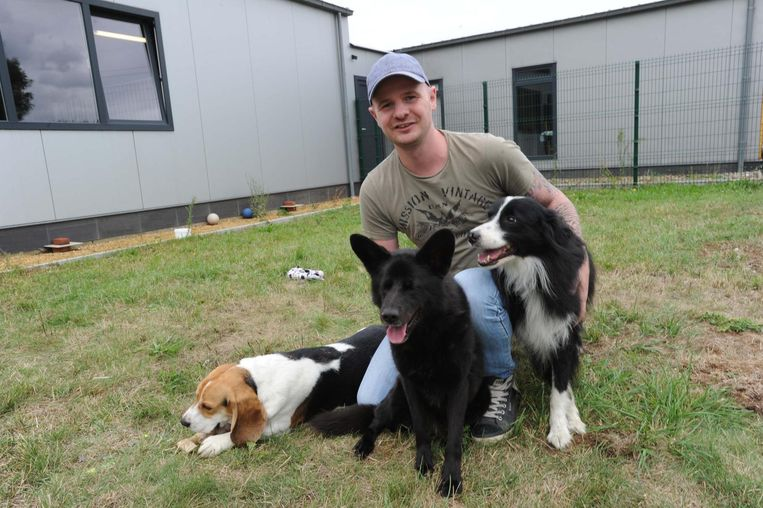 Door de staking konden de honden van het dierenasiel in Eppegem vanochtend geen wandeling maken.