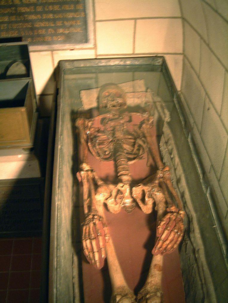 Dit skelet in de grafcrypte van de dekenale kerk in Zottegem zou toebehoren aan de Graaf van Egmont, maar bewijzen zijn er (nog) niet.