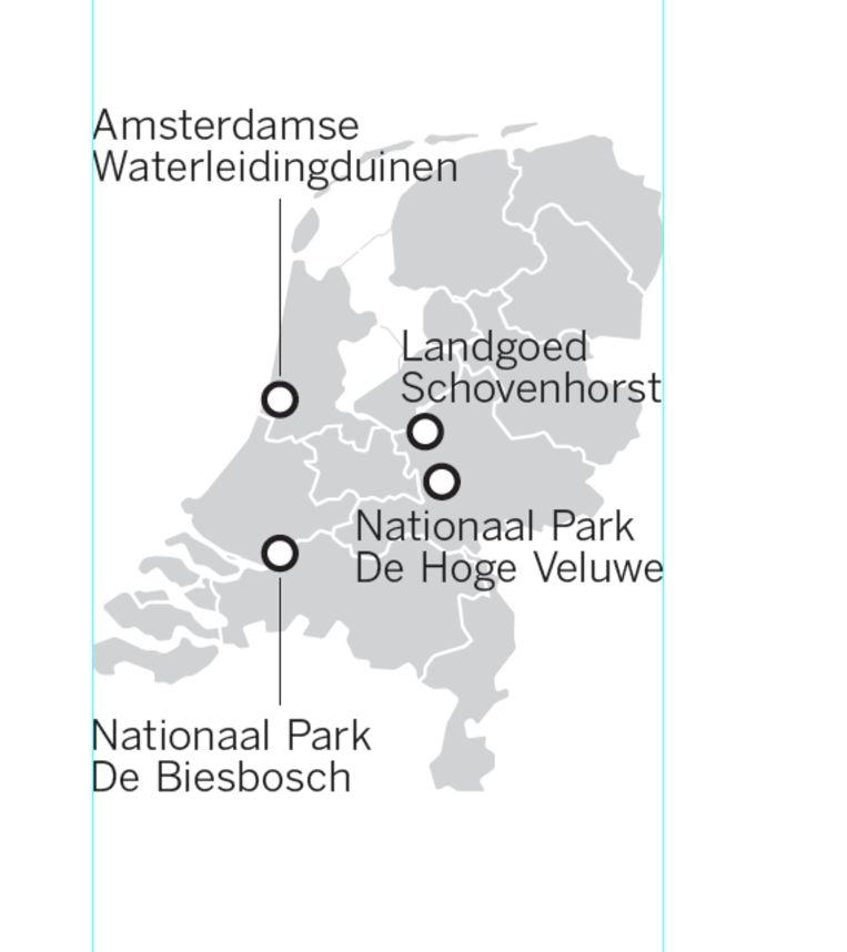 Enkele natuurgebieden in Nederland. Beeld Raymond van der Meij