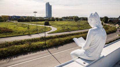 Prof die Oosterweelverbinding uit impasse haalde, biedt tegen september 2020 klaarheid over toekomst van The Loop