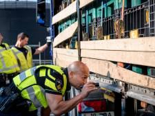 Inklimmers uit Albanië aangetroffen in trailer van Rotterdamse ferrymaatschappij