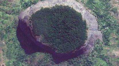 Vulkaan verbergt ultiem geschenk voor biologen: een onontdekt regenwoud