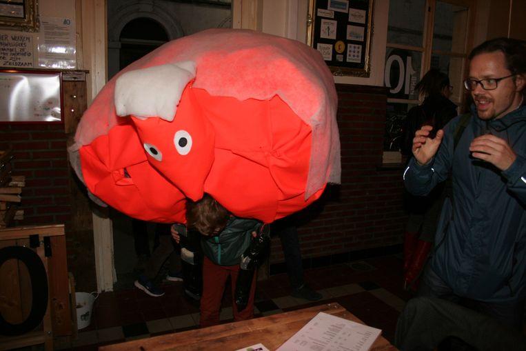 Het oranje schaap van Tienen Zuid wordt binnengebracht