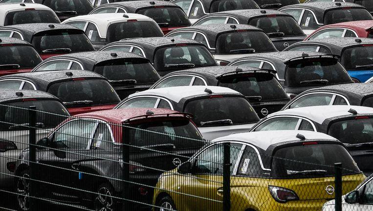 Nieuwe Opels op de parkeerplaats van de Opelfabriek in het Duitse Eisenbach. Beeld EPA