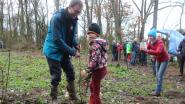 Geelstervallei blijft groeien: 1000 bomen geplant en 5 hectare extra aangekocht