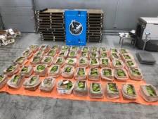 Lading cocaïne ter waarde van 56 miljoen euro onderschept in Rotterdamse haven