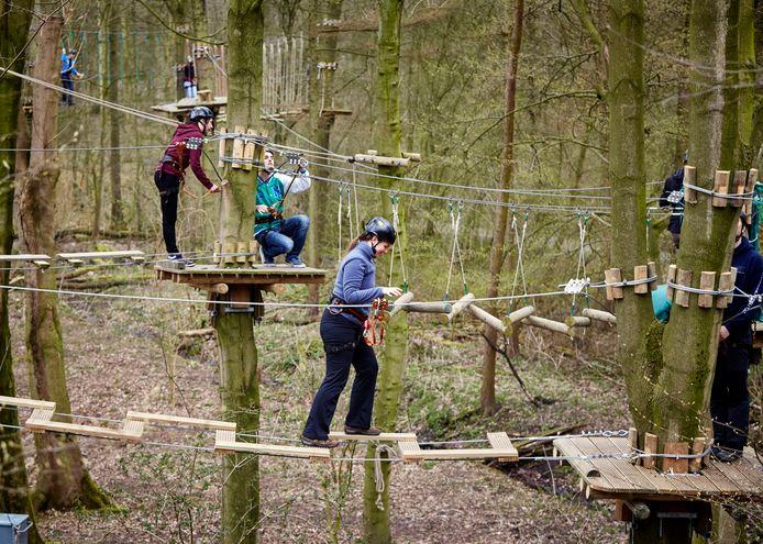 Klimpark Funforest in het Kralingse Bos ter illustratie