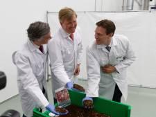 'Bergse insectenfabriek' Protix wint innovatieprijs