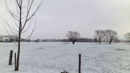 Winterse landschappen in Hofstade