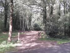 'Seksboshut' in Amersfoort weg: komst tiny houses nog niet zeker