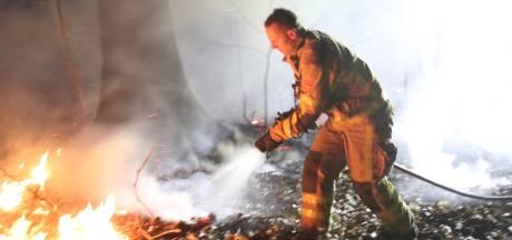 Bosbranden op Veluwe snel onder controle