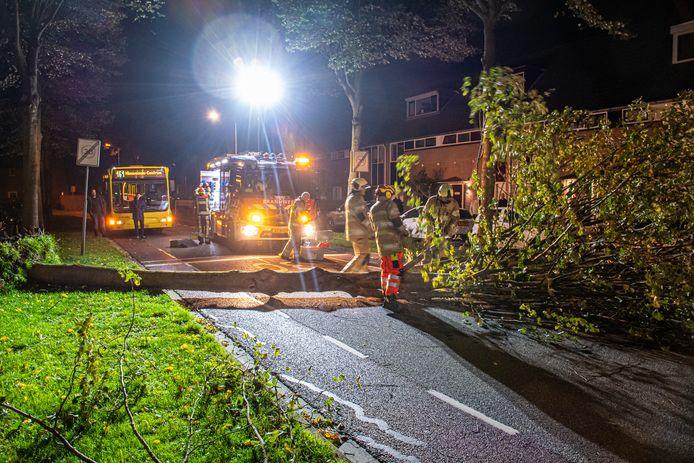Stormschade in IJsselstein