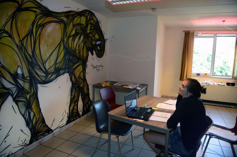 Vier graffiti artiesten, onder leiding van Matthew Dawn voorzien twee student huizen in Leuven van nieuwe interieur decoratie (tekst Andreas).studente aan het studeren