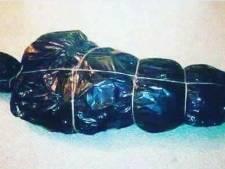 """Le conseil humoristique d'une zone de police anversoise: """"Ne transportez pas votre sapin de Noël comme ça"""""""
