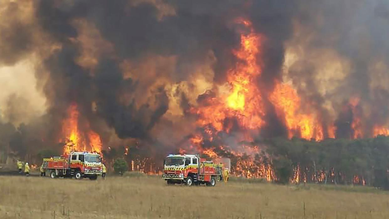 De brandweer probeert het vuur te stoppen in New South Wales.