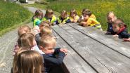 Met de kleuters naar Beislovenpark