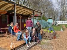 Bewoners van Groenlandje starten petitie om ecodorp te behouden: 'Hier of op een andere plek'