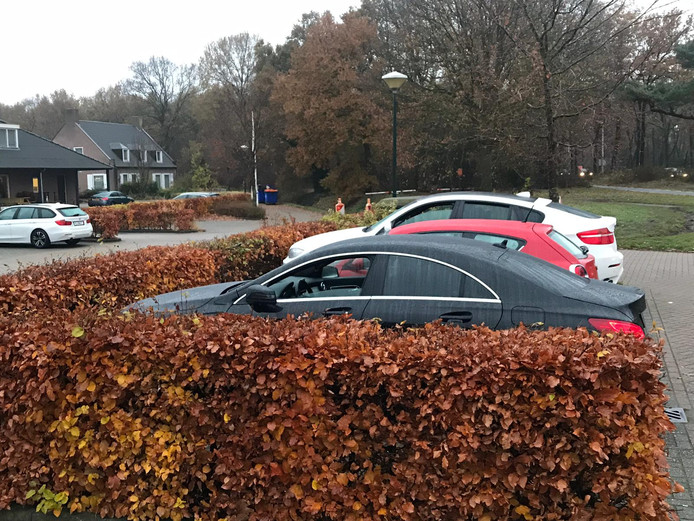 Twee van de auto's die woensdagochtend geparkeerd staan op het terrein van de Vijf Eiken.