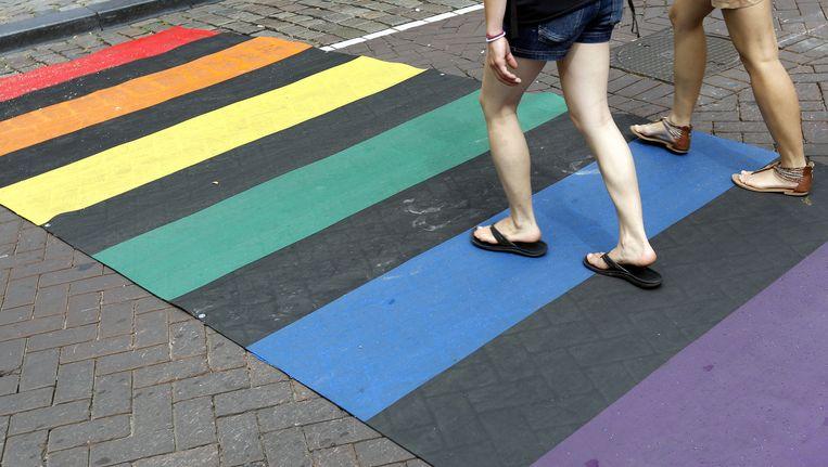 Tijdens de Gay Pride in 2013 werd bij het Homomonument een tijdelijk zebrapad neergelegd in de kleuren van de regenboog Beeld anp